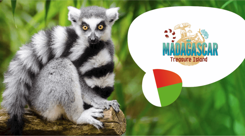 Madagaskar!